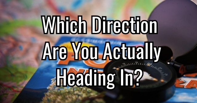 Which Direction Are You Actually Heading In?