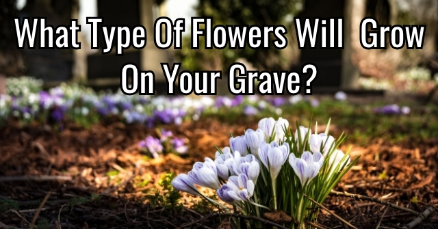 What Type Of Flowers Will Grow On Your Grave?