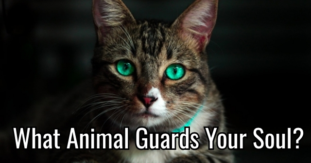 What Animal Guards Your Soul?
