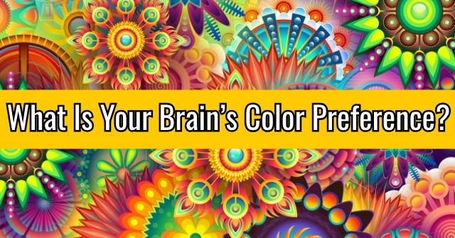 What Is Your Brain's Color Preference?