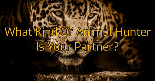What Kind Of Animal Hunter Is Your Partner?