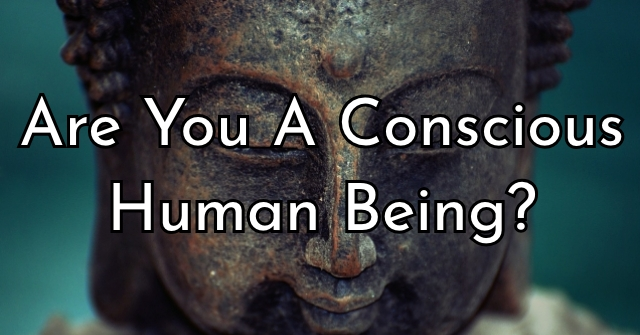 Are You A Conscious Human Being?