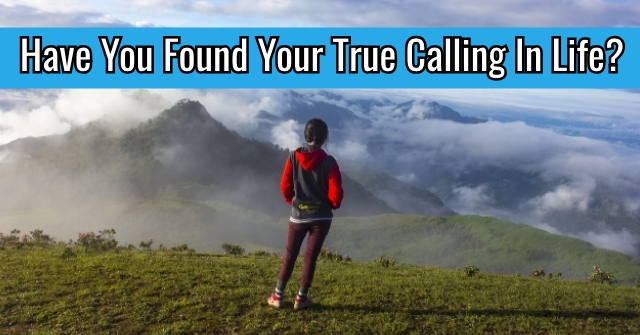 Have You Found Your True Calling In Life?