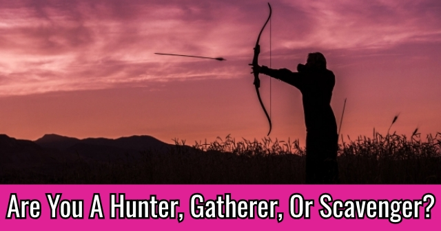 Are You A Hunter, Gatherer, Or Scavenger?