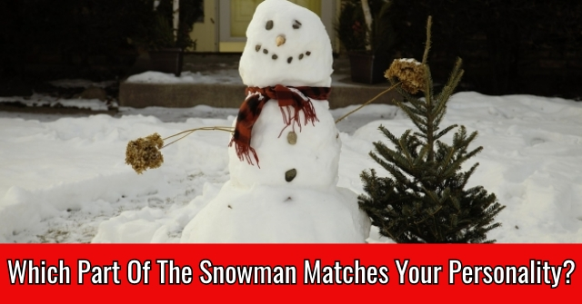 Which Part Of The Snowman Matches Your Personality?
