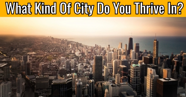 What Kind Of City Do You Thrive In?