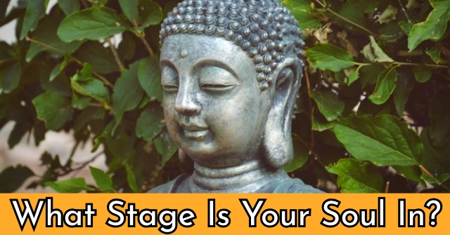 What Stage Is Your Soul In?