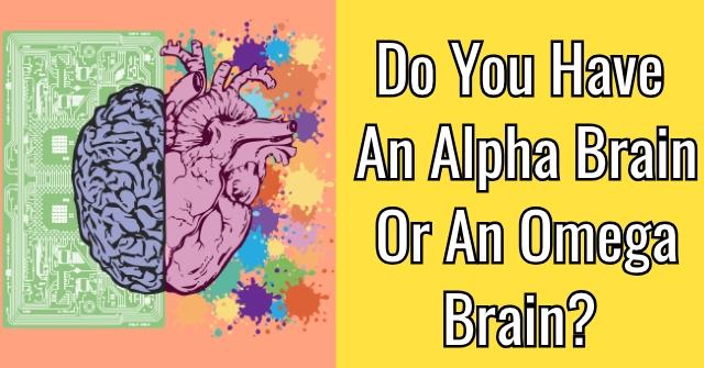 Do You Have An Alpha Brain Or An Omega Brain?