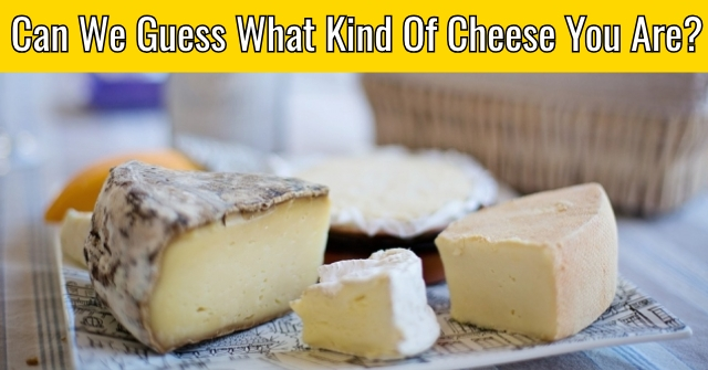 Can We Guess What Kind Of Cheese you Are?