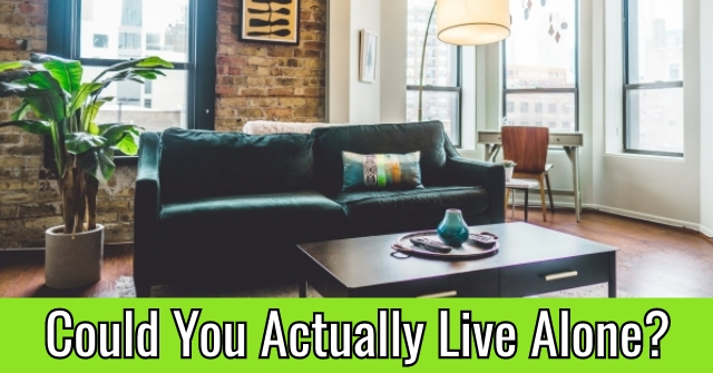Could You Actually Live Alone?