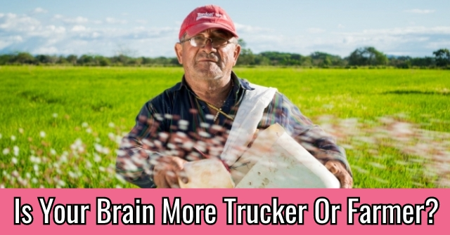 Is Your Brain More Trucker Or Farmer?