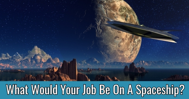 What Would Your Job Be On A Spaceship?