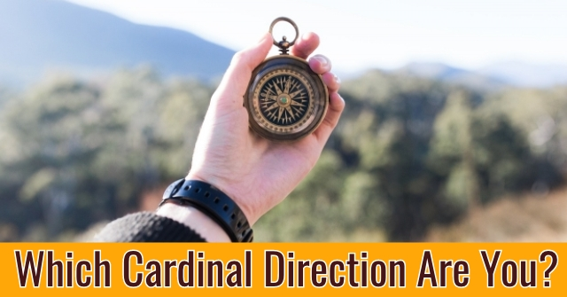 Which Cardinal Direction Are You?